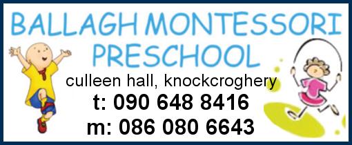 BallaghM-School